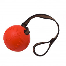 DogLike мяч средний с Лентой