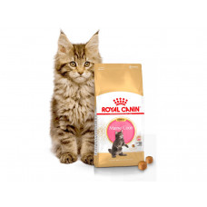 Royal Canin Kitten Мaine Coon 4кг для котят мейн-кун