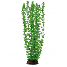 """Laguna Растение""""Бакопа""""зеленая,40см"""