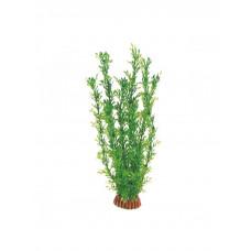 """Laguna Растение""""Лигодиум""""зеленый,20см"""