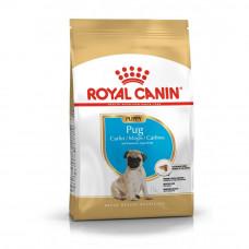 Royal Canin Pug Junior 1,5 кг для щенокв мопса, Роял Канин для щенков