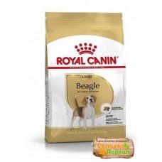Royal Canin для взрослых собак породы бигль 3кг, Роял Канин для собак