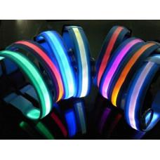 Ошейник BUDDY светящийся 2,5*40-5см синий