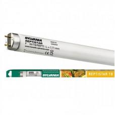 Люминесцентная лампа для террариума 18W Reptistar